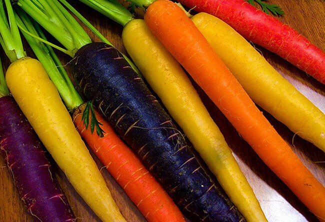 Zanahoria Arcoiris Organica Tienda Botanicas Santa Ana La zanahoria es una verdura dura. zanahoria arcoiris organica