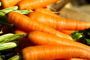 Zanahoria Organica Tienda Botanicas Santa Ana Las zanahorias están presentes en diversos formatos, tanto en recetas, como en otras preparaciones de uso cosmético. zanahoria organica